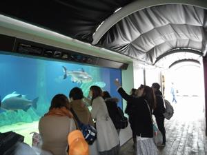 サンシャイン水族館へGo!